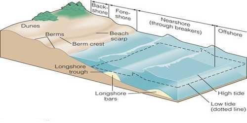 Low Sedimentary Coasts: Erosional Landforms