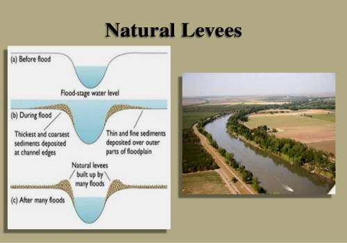 Natural Levees Depositional Landforms Qs Study