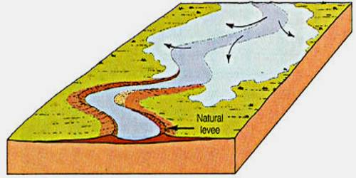 Natural Levees: Depositional Landforms