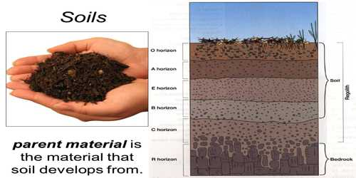 Parent Material: Soil Forming Factor