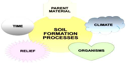 Process of Soil Formation