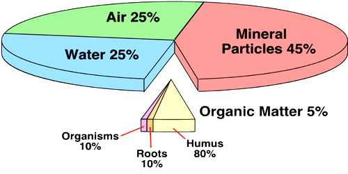 Soil Formation: Soil Contents