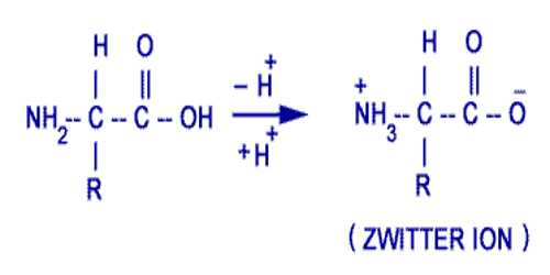 Amphoteric Electrolytes: Zwitter Ions