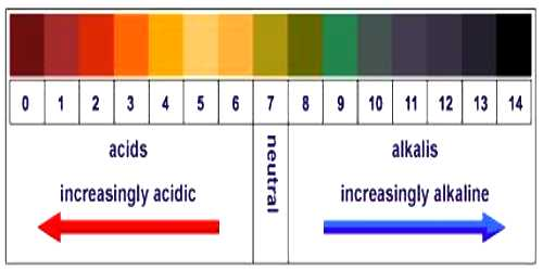 Measurement of pH
