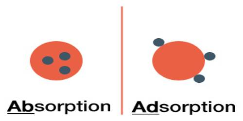 Nature of Adsorption