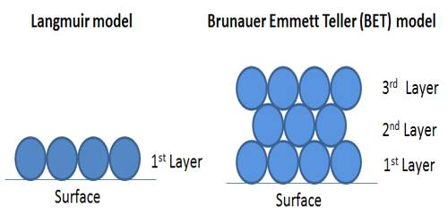 BET (Brunauer, Emmet, and Teller) Isotherm
