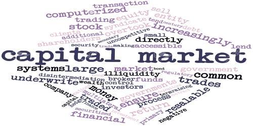 Participants in Capital Market