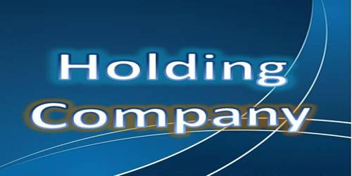 Types of Holding Company