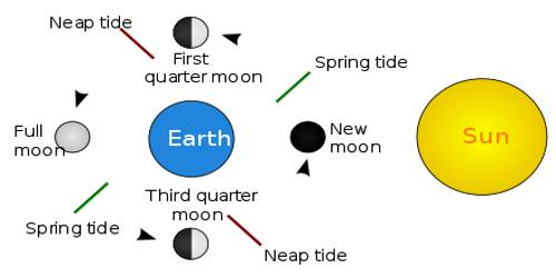 Types of Tides