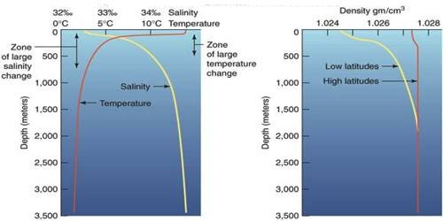 Vertical Distribution of Salinity