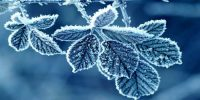 Frost in the atmosphere
