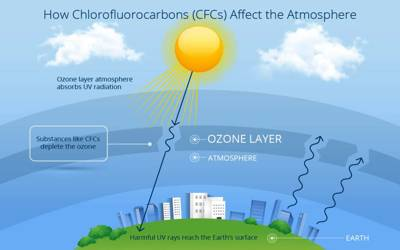 an analysis of the cfcs and substitutes and the ozone hole Keywords: refrigeration, chlorofluorocarbons, cfcs, cfc substitutes contents  1 refrigeration, refrigerants, ozone depletion, and global warming  summary  the most common thermodynamic cycle used for refrigeration is the reversed.