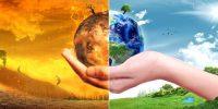 Ecological Balance