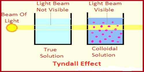 Optical Property of Colloids