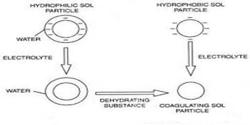 Colloidal Electrolyte
