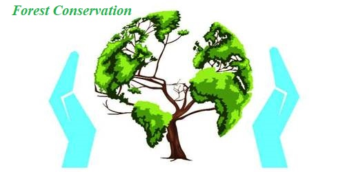 Forest Conservation in Indian Subcontinent