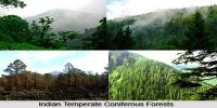 Tropical Deciduous Forests in Indian Subcontinent