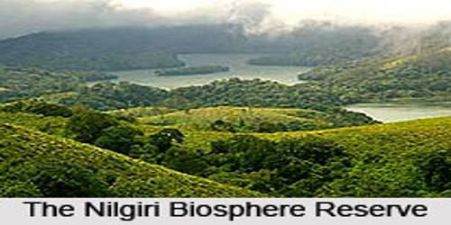 Nilgiri Biosphere Reserve