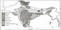 Peaty Soils in Indian Subcontinent
