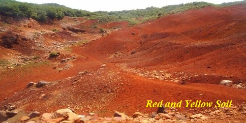 Red and Yellow Soil in Indian Subcontinent