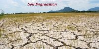 Soil Degradation