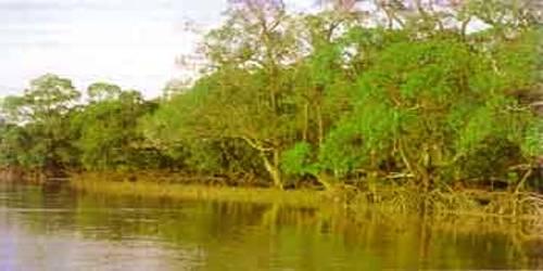 Sunderbans Biosphere Reserve