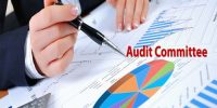Objectives of the Audit Committee