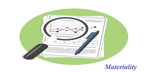 Materiality in Audit Function