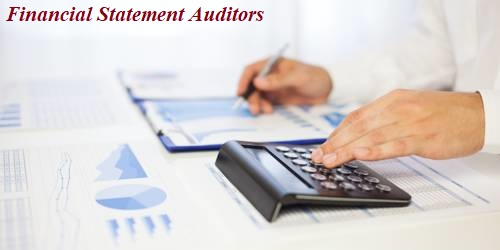 Power and Duties of Financial Statement Auditors