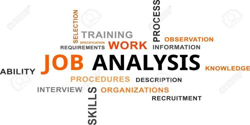 Implications for Job Analysis