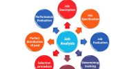 Purposes or Objective of Job Analysis