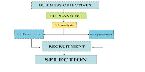 Relationship among Selection, Recruitment, and Job Analysis