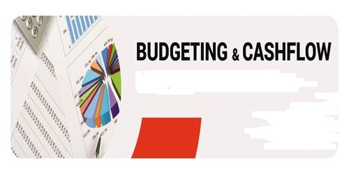 Difference between Cash Budget and Cash Flow Statement