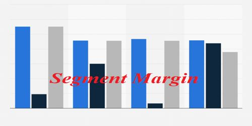 Segment Margin in Product Line