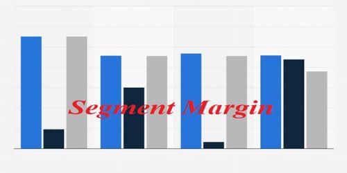 Segment Margin in Product Line