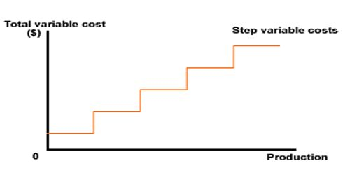 Step Variable Cost