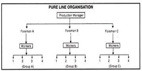 Pure Organizational System of Project Organization