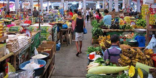 Market Characterization through Market Survey