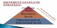 Differentiate between Business and Functional level strategy