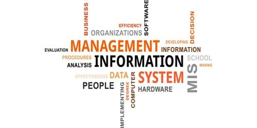 Management Information System (MIS)