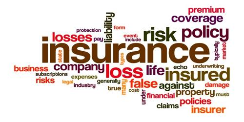 Assess the elements of an Insurance Risk