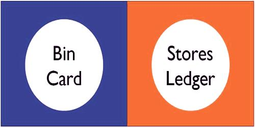 Differences between Bin Card and Store Ledger