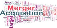 Synergy in Merger or Acquisition