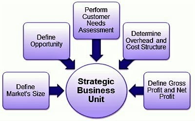 Strategic Business Units 1