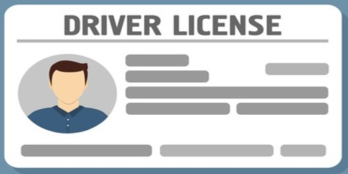Application for Driving License Renewal