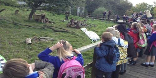 My School Picnic to Zoo