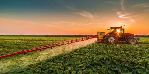 Role of Agriculture in the Economy