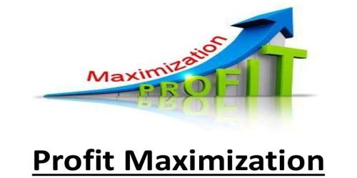 Profit maximization goal of financial management