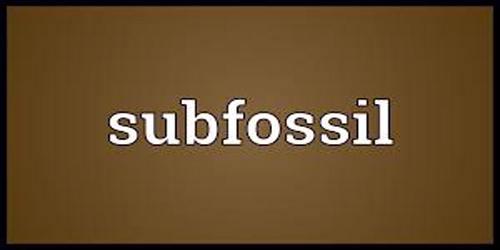 Subfossil
