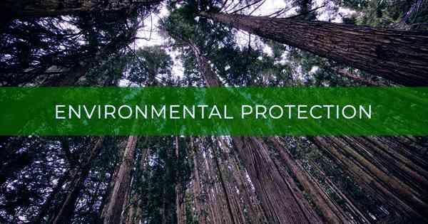 Environmental Protection Economic Analysis
